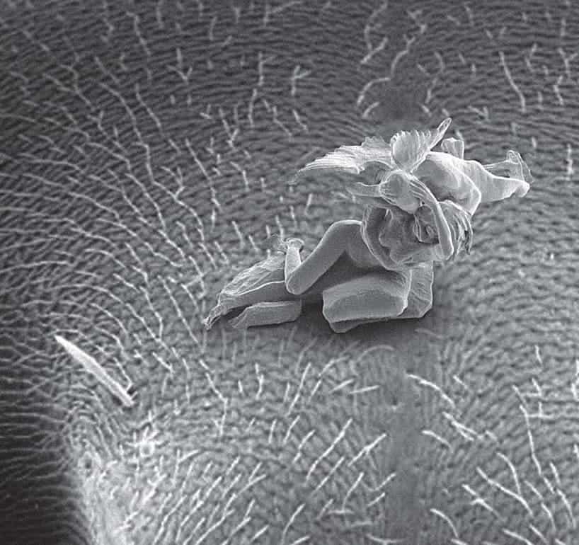 nano-sculpture