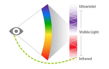 The human eye can detect only those light frequencies that fall in the so-called visible spectrum. Anything outside of it, like the ultraviolet or infrared range, can't be detected, hence seen. In some special conditions, however, scientists have demonstrated that its possible to notice infrared light.
