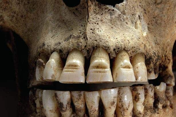 new studies show vikings filed their teeth, had female warriors and