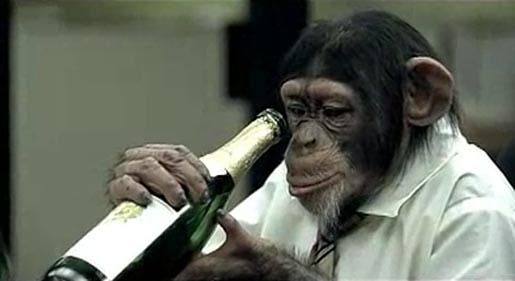 Our ability to ingest alcohol safely originated 10 million years ago in common ancestor of humans and chimps. Image: Daily Mail