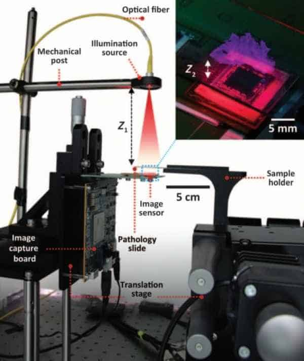 Operating principle and main components of the UCLA holographic microscope. Credit: UCLA