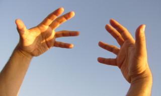 human hands ancestor