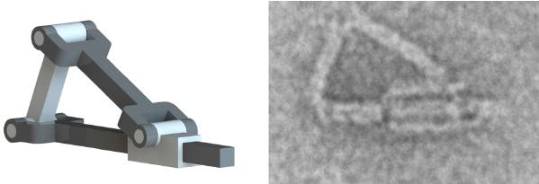 A DNA origami piston. Credit:  Ohio State University.