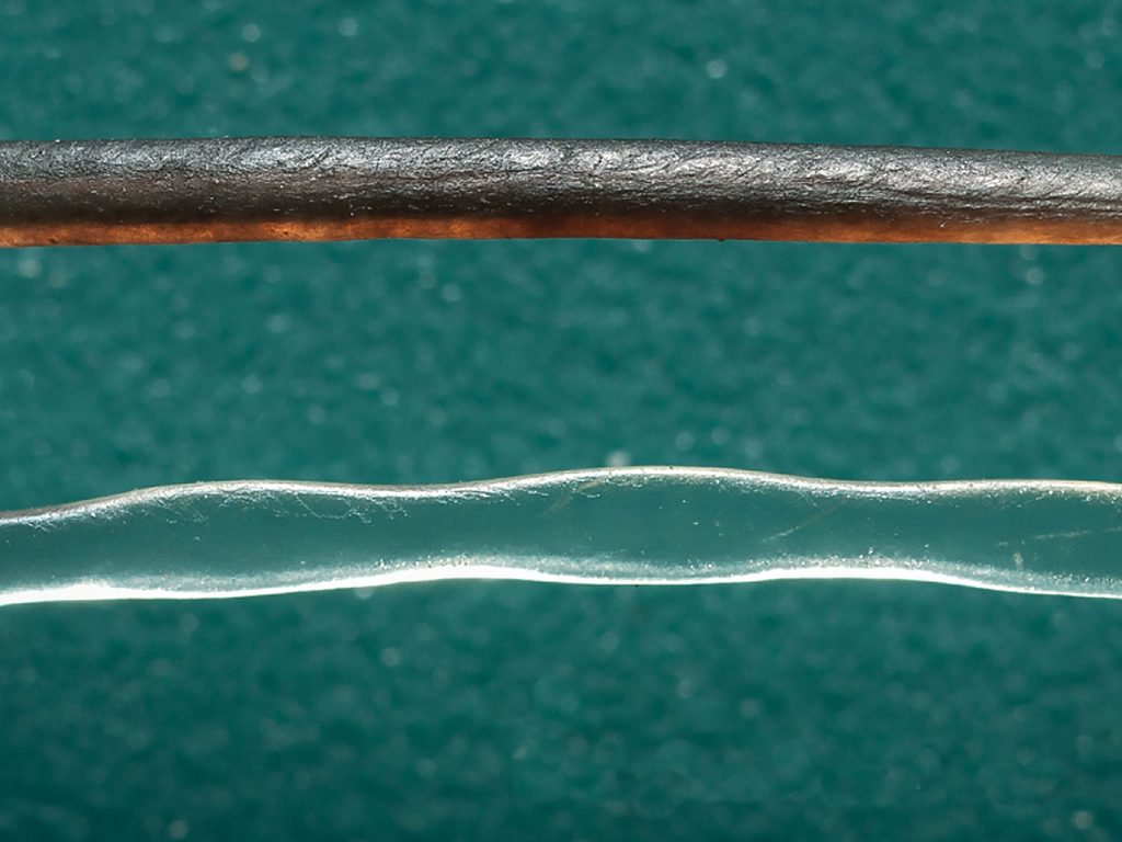 A normal whisker (top), and the seal's wiggly ellipse-shaped whisker (bottom). Credit: PLOS ONE