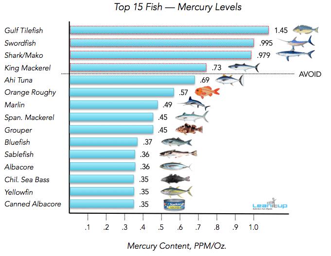 mercury pollution fish.