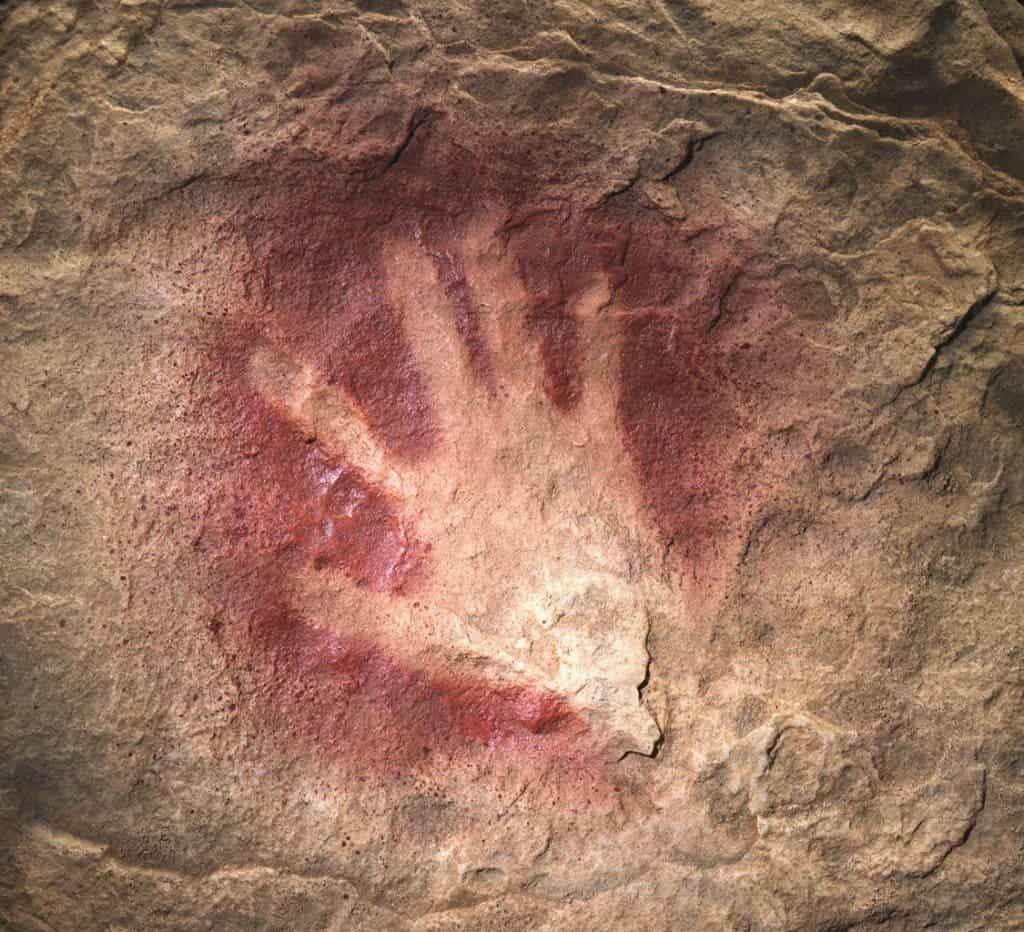 Image result for chauvet cave paintings