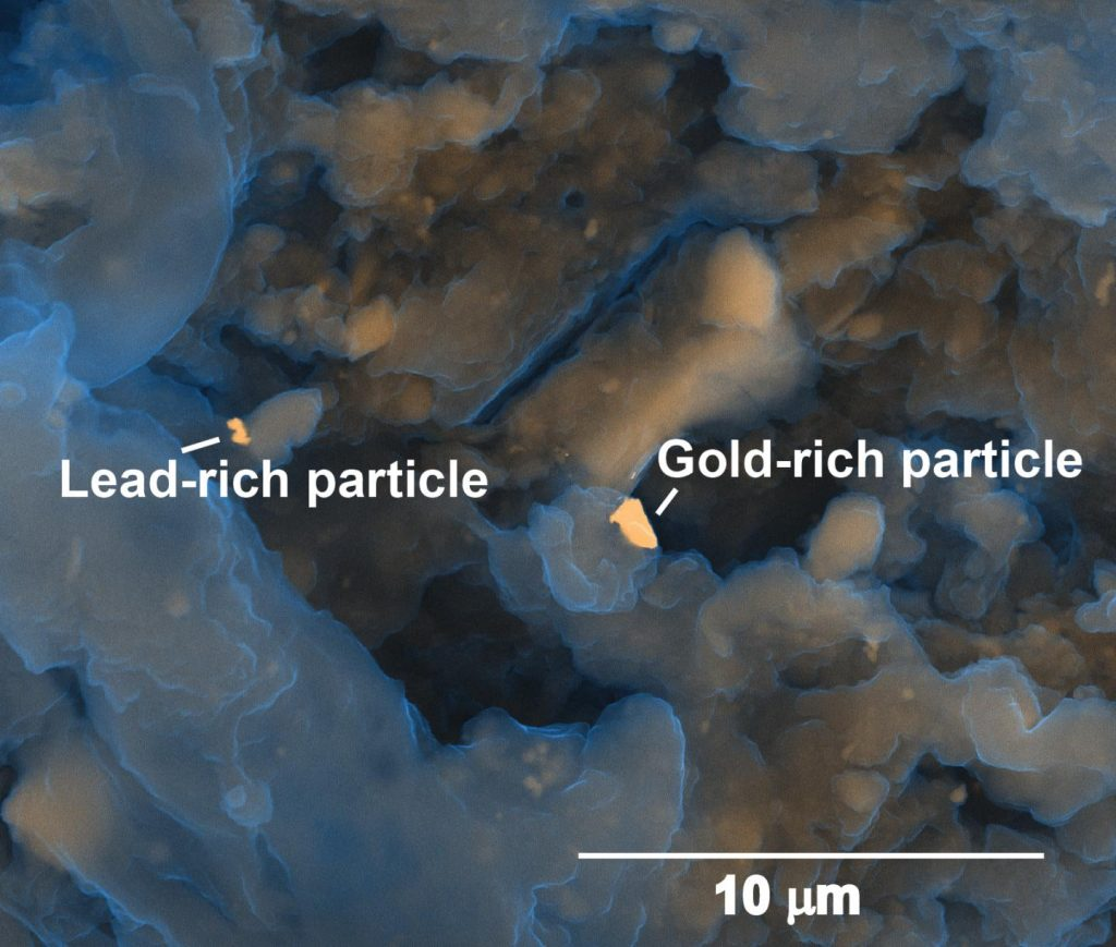 This image shows microscopic gold-rich and lead-rich particles in a municipal biosolids sample. Image credit: Heather Lowers, USGS Denver Microbeam Laboratory