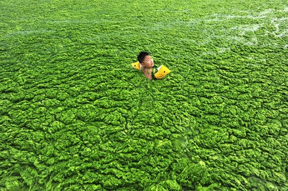 China polluted waters