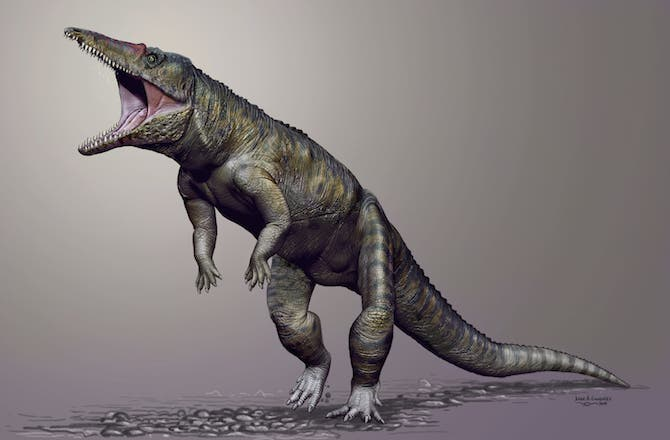 "Artist impression of the ""Carolina Butcher,"" Carnufex carolinensis. Credit: JORGE GONZALES"