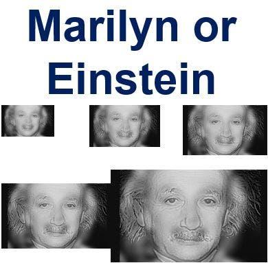 Marylin-or-Einstein
