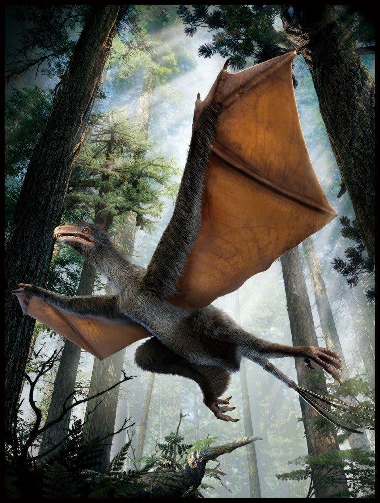 Artist's impression of the new dinosaur Yi qi. Credit: Dinostar Co. Ltd