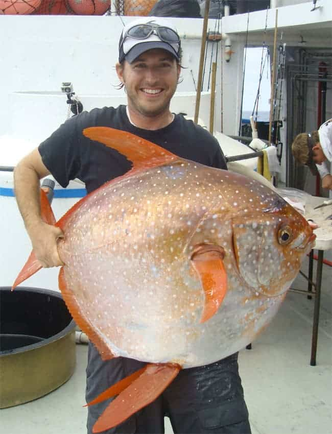 Researchers Nick Wegner holding a opah.  Image: National Geographic