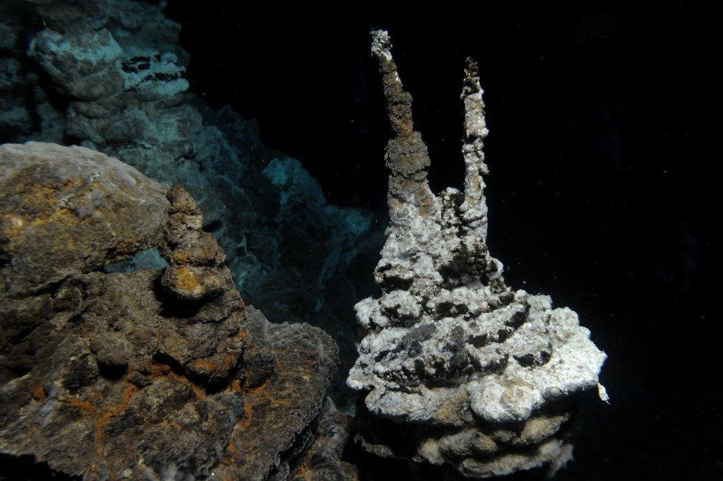 Image of a hydrothermal vent field along the Arctic Mid-Ocean Ridge, close to where 'Loki' was found in marine sediments. Credit: Centre for Geobiology (University of Bergen, Norway) by R.B. Pedersen