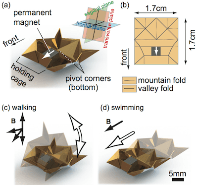 Illustrations that show the origami bot's main structural components, how it folds and modes of locomotion. Image: MIT