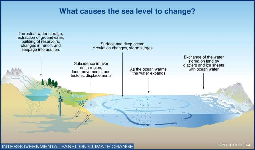 Dangers of global warming to marine life and ecosystems reiterated global warming oceans sciox Images