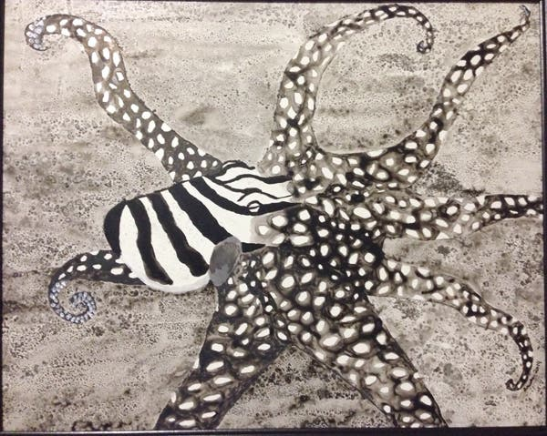 Larger Pacific Striped Octopus, mixed media, Arwen Edsall
