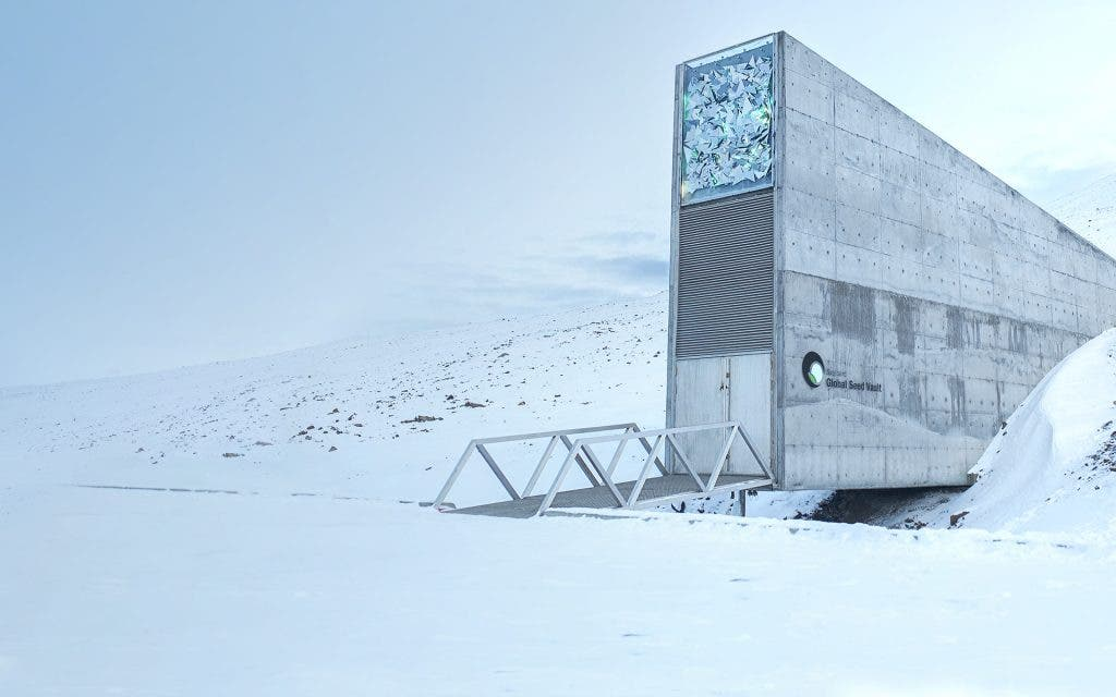Syrian Researchers Withdraw Seeds From The Arctic Doomsday Vault