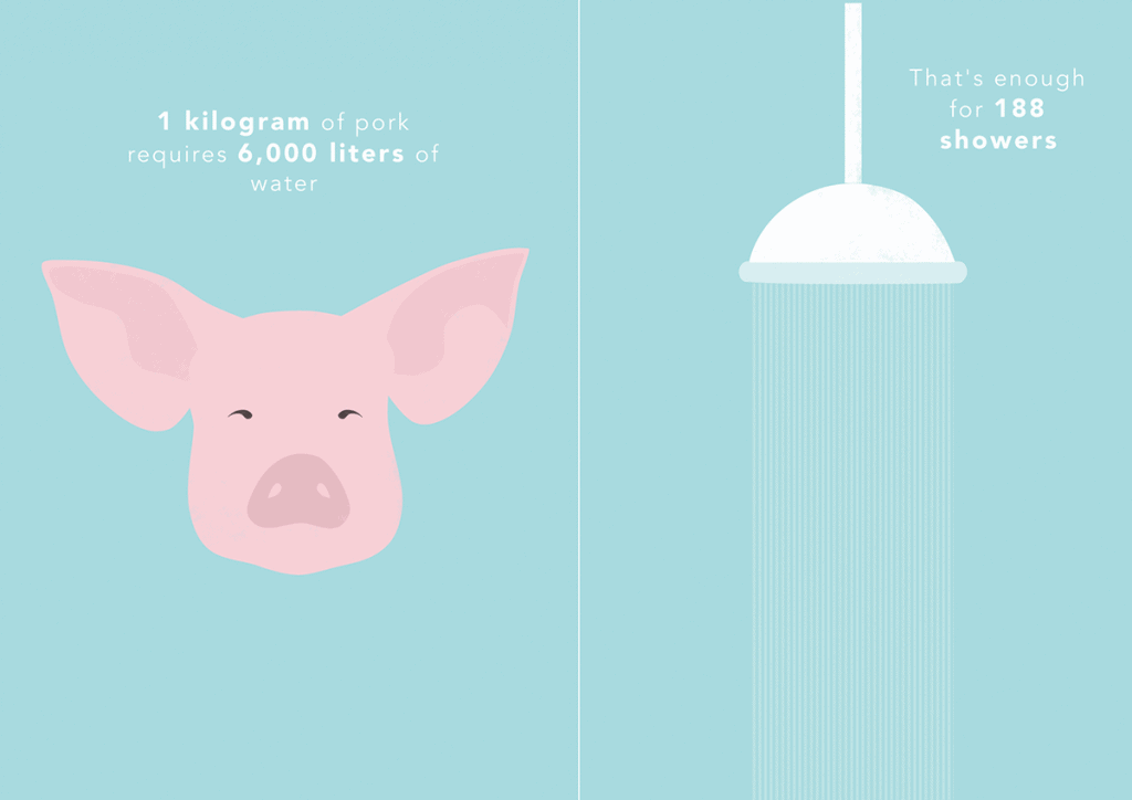 pork water