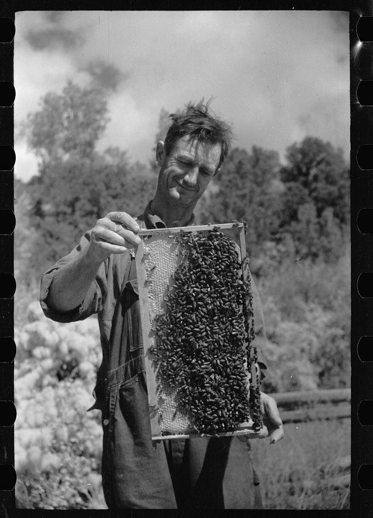 George Arnole exhibits a super of honey raised on his farm in Chaffee County, Colorado