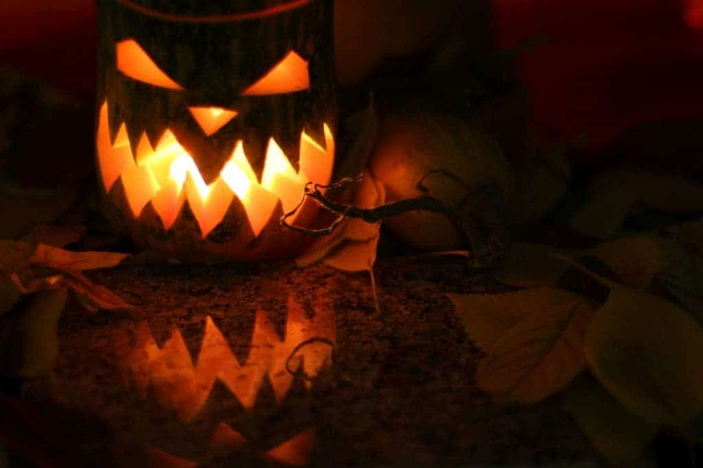 Halloween Pumpkins - Where do they come from?