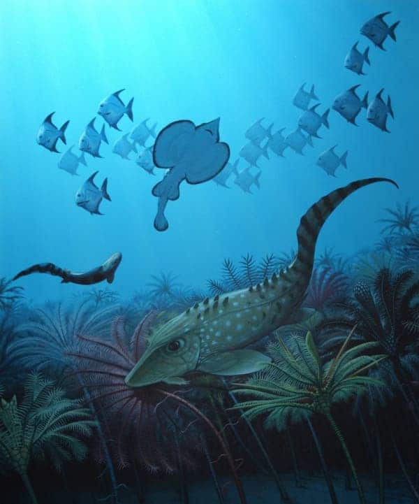An imagined post-extinction scene, when the ocean was filled with tiny fish. Illustration: Bob Nicholls