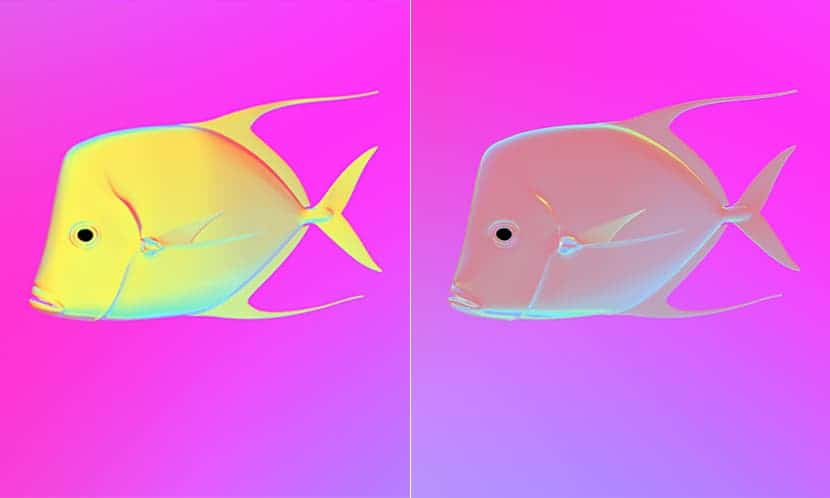 Simulated view of how the lookdown fish would appear in polarized light with mirrored skin (left) versus skin that reflects polarized light (right). Images are from simulations created by the Cummings lab.