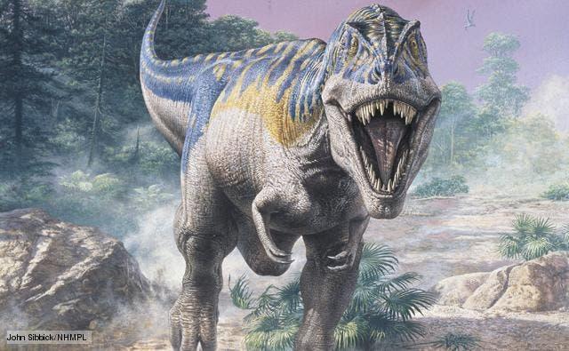 tyrannosaurus_1