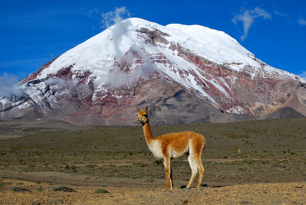Mount Chimborazo. Image via Wikipedia.