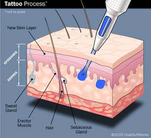 Why Getting A Tattoo Hurts