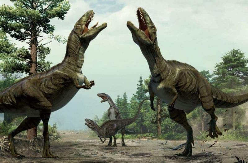 What a dinosaur mating dance might have looked like. Credit: Lida Xing and Yujiang Han/University of Colorado Denver