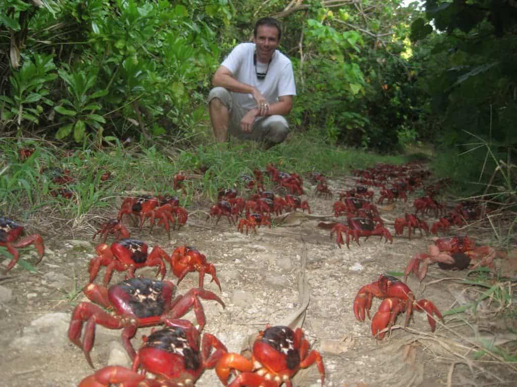 120 million crabs hit the streets