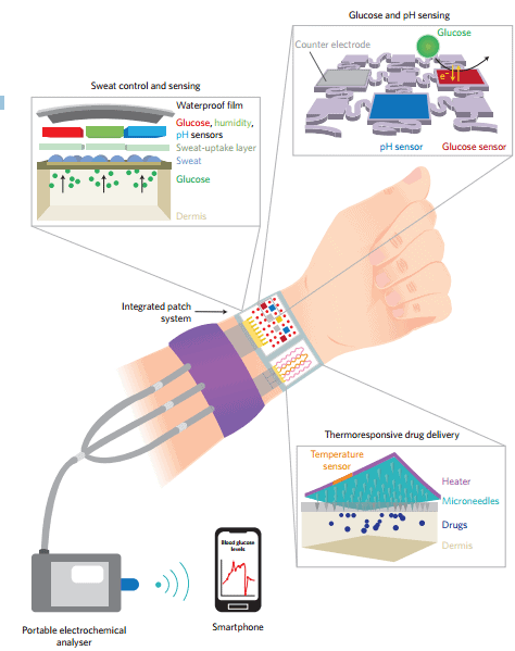 Schematic diagram of the integrated glucose monitoring and diabetes therapy system. As sweat accumulates in the patch, the glucose it contains is monitored electrochemically on a graphene hybrid platform that also supports an array of other sensors (pH, humidity, mechanical strain). In response to the detected glucose, actuation of thermoresponsive polymeric microneedles is initiated, releasing an appropriate quantity of diabetes medication. The graphene hybrid device connects electrically to a portable electrochemical analyser, which acts as a power supply and controller that wirelessly transmits data to a remote mobile device (such as a smartphone). Figure adapted from the Supplementary Information for ref. 2, Nature Publishing Group