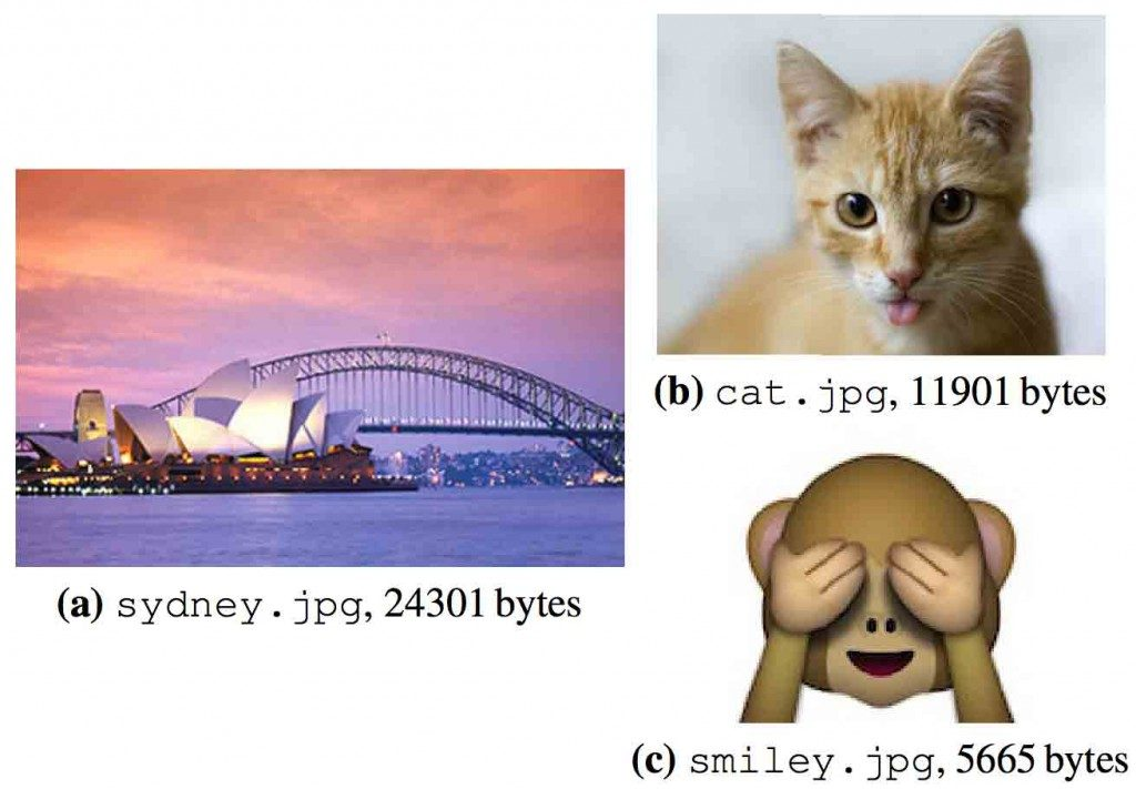 The encoded images used by the University of Washington researchers.