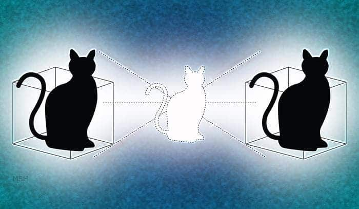 Yale physicists have given Schrödinger's cat a second box to play in. Credit: Illustration by Michael S. Helfenbein/Yale University