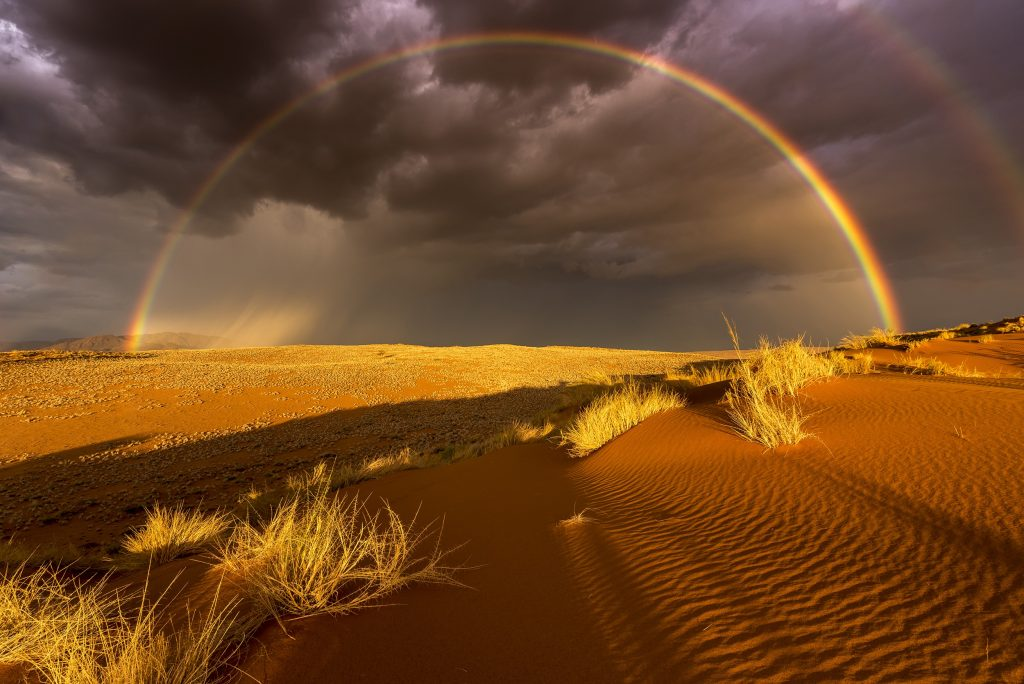 Over the last 7 years I had one aim - photograph rain in the driest desert of Africa. In 2015 finally I found the rain. In the breathtaking scenery of the Namibrand-Park right at the border of the Namib Naukluft Nationalpark. An enormous thunderstorm came in and the setting sun created a wonderful rainbow. The challenge was, to not have my shadow in the picture.