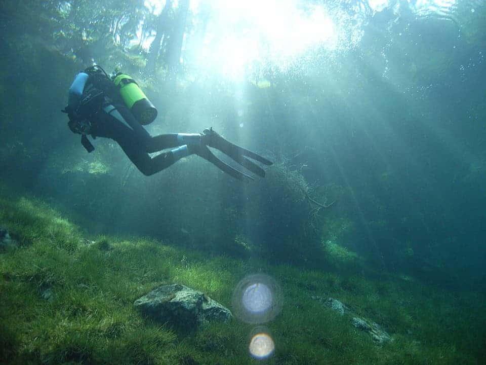 Grüner Lake: The Austrian Underwater Park