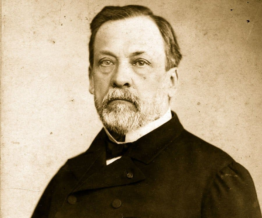 Assez Louis Pasteur, Spontaneous Generation, and Germ Theory AC91