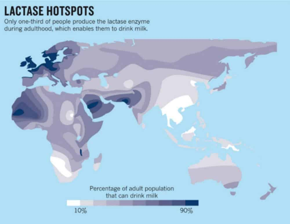 Lactose Tolerance map