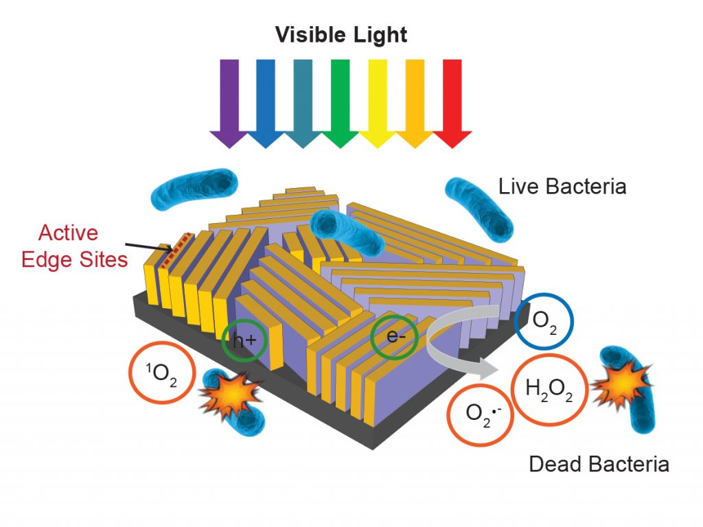 Schematic showing how Stanford's tiny black cube works to *kill bacteria*. Credit: SLAC National Accelerator Laboratory