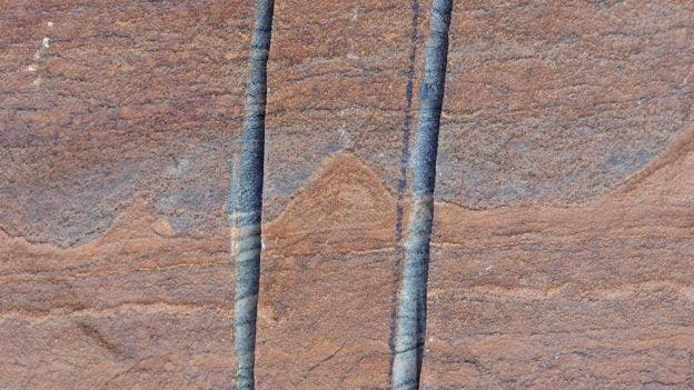 The stromalites trapped in layered rocks from Greenland. Credit: ALLEN NUTMAN