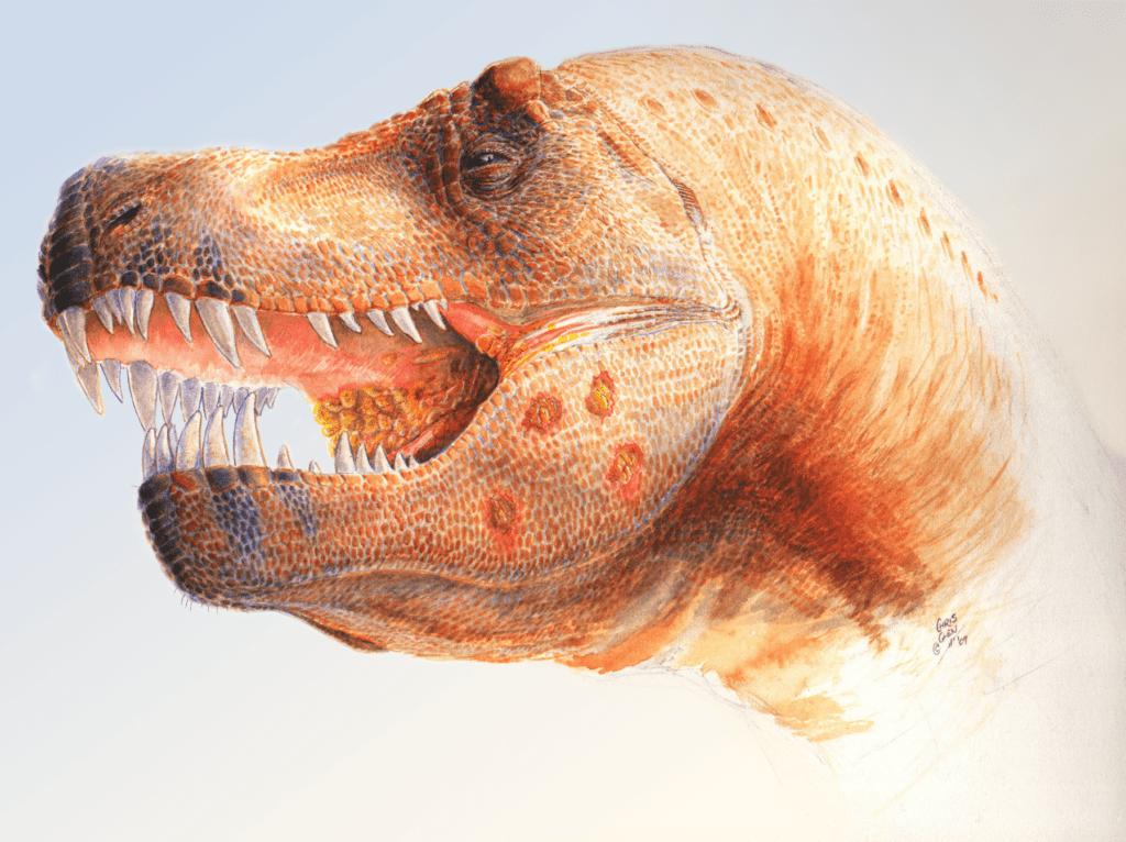 A fabulous T-Rex. Credit: Wikimedia Commons