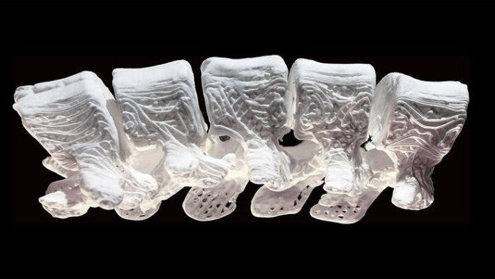 The section of a human spine made from the new 3-D printed material. Credit: Adam E. Jakus