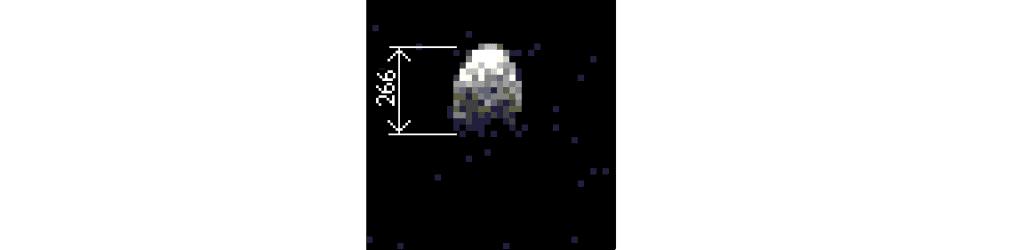 Radar image of 101955 Bennu (courtesy Arecibo Observatory and JPL)