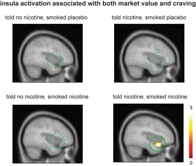 """Smokers showed significant ventral anterior insula activation and post-smoking craving only when they were told """"nicotine in cigarette"""" and smoked nicotine but not in other conditions. Credit: Frontiers of Psychiatry."""