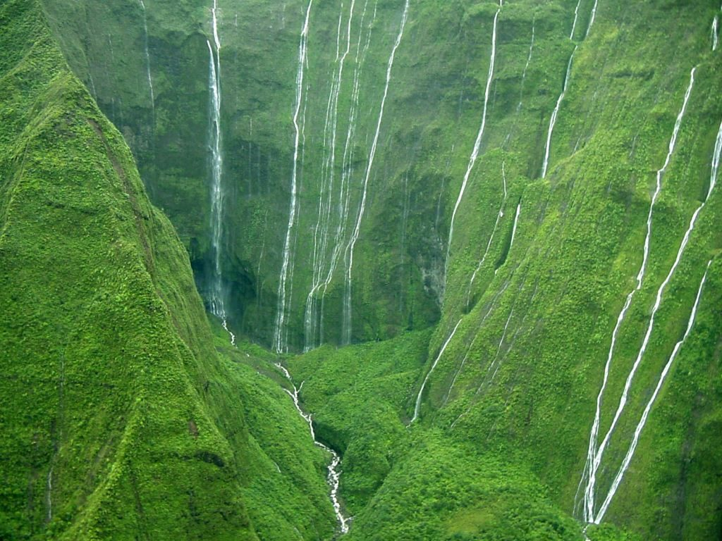 the top 10 wettest places on earth
