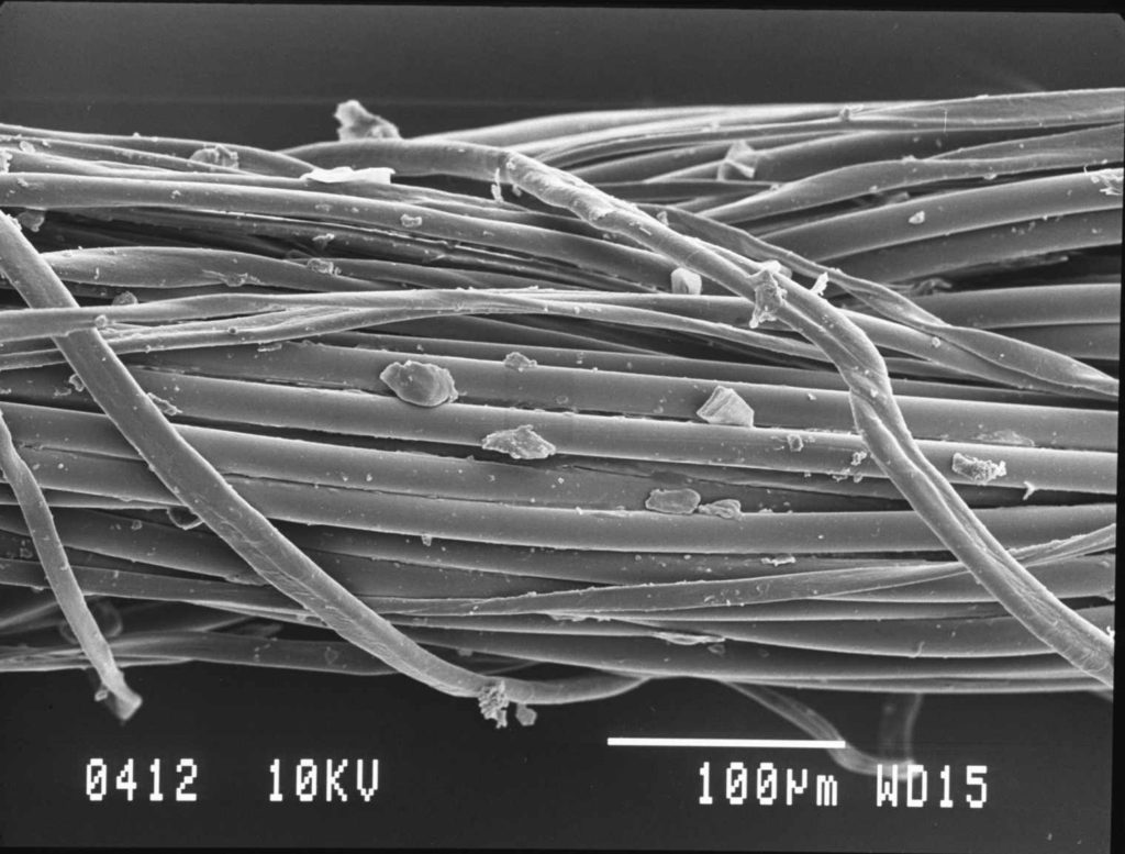 Cotton thread under a microscope (SEM). Image from UWBL.