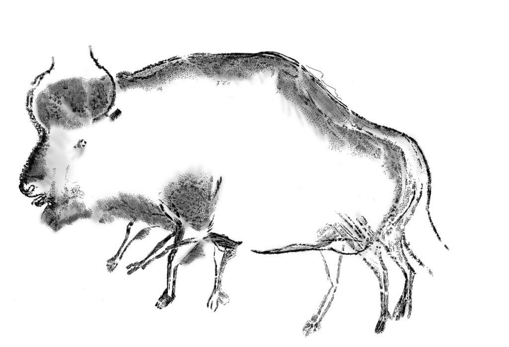 Reproduction of the blurred black charcoal drawing showing a stepped bison. The drawings were found at Chauvet-Pont d'Arc cave in Ardè€che, France. Credit: Carole Fritz and Gilles Tosello