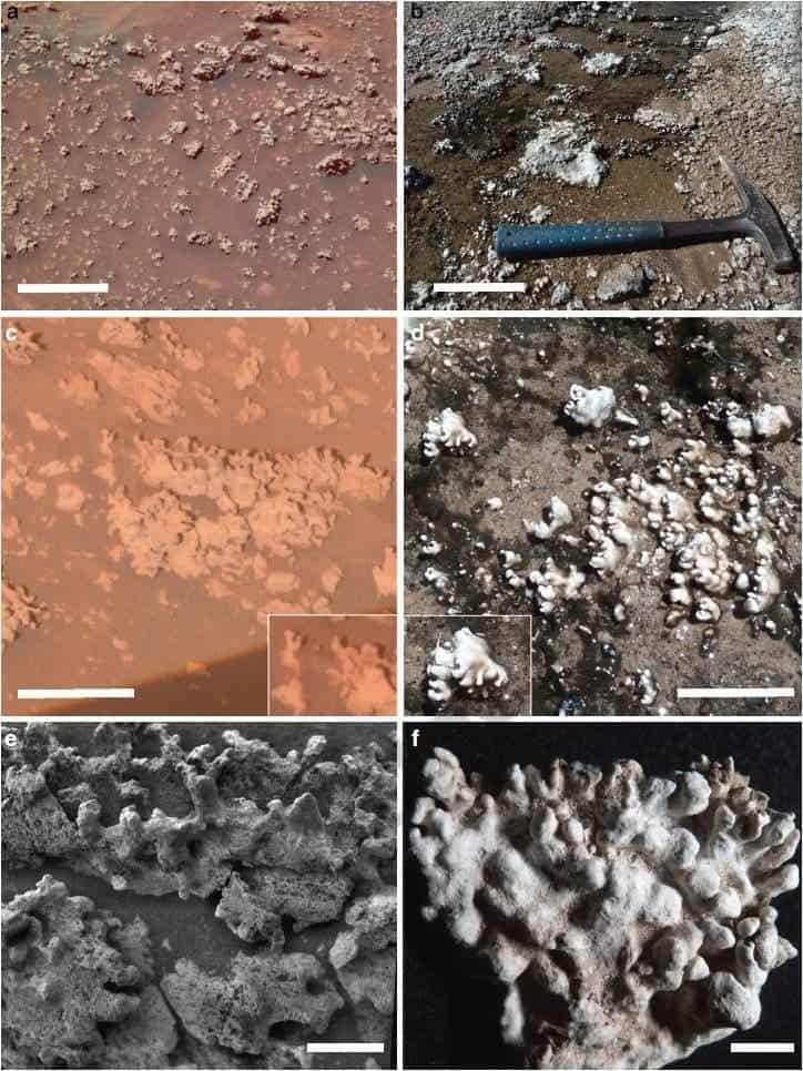 Opaline silica: on the left samples collected from Mars, El Tatio on the right. Credit: ASU.