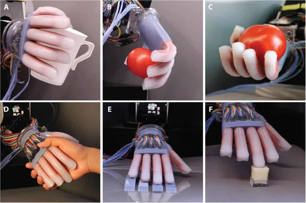 Human-like interactions were tested against various objects. Credit: Cornell University.