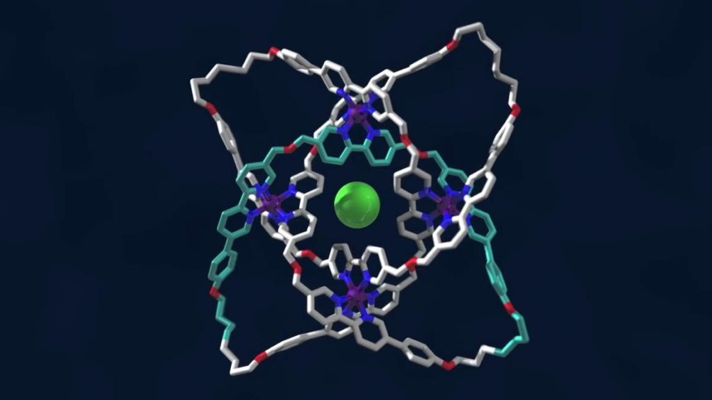 A molecular knot with eight crossings. Credit: YouYube/University of Manchester.